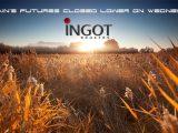 Grains futures