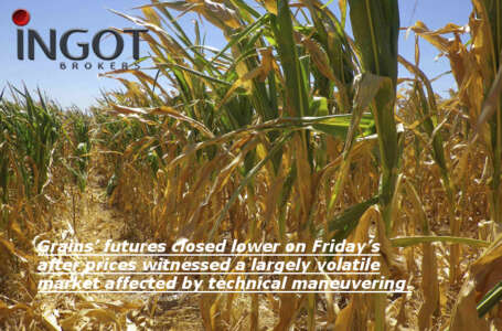 Grains' futures closed lower on Friday's after prices witnessed a largely volatile market affected by technical maneuvering.