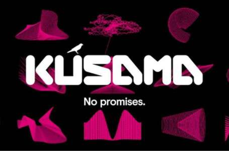 Kusama Network a Young Network with Rich Potential Coming Up With Social Module